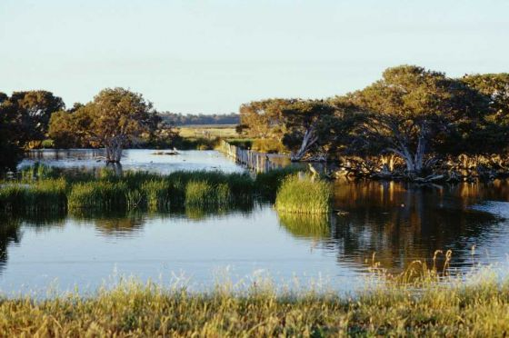 Wetlands near busselton